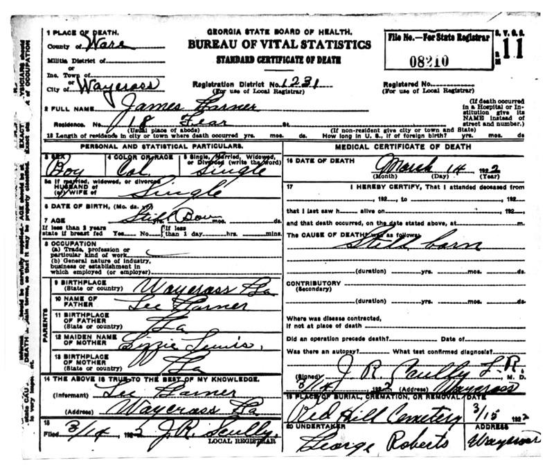 Death Certificate for James Garner.  Identifier number 08210.