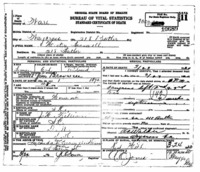 Official death certificate for Hester Braswell. Identifier number 10689.